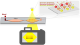 Biosensorik Kamerasystem Schema