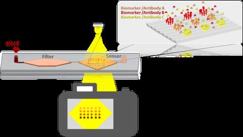 Biosensorik