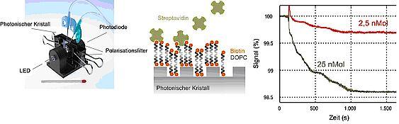 biosensor_01.jpg